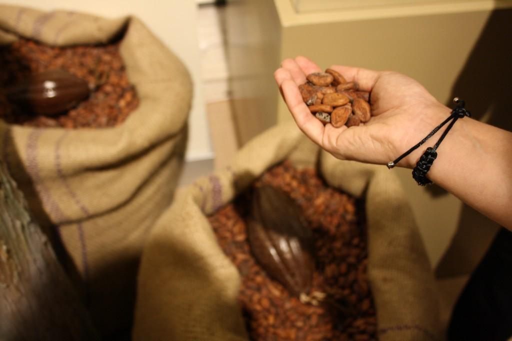 çikolata meyvesi-bugunneyesem